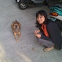 我和酷狗哈利!