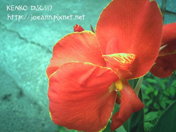 未命名檔案夾 2-PICT0114.jpg