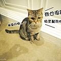 JAN_6667.jpg