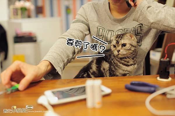 JAN_4149.jpg