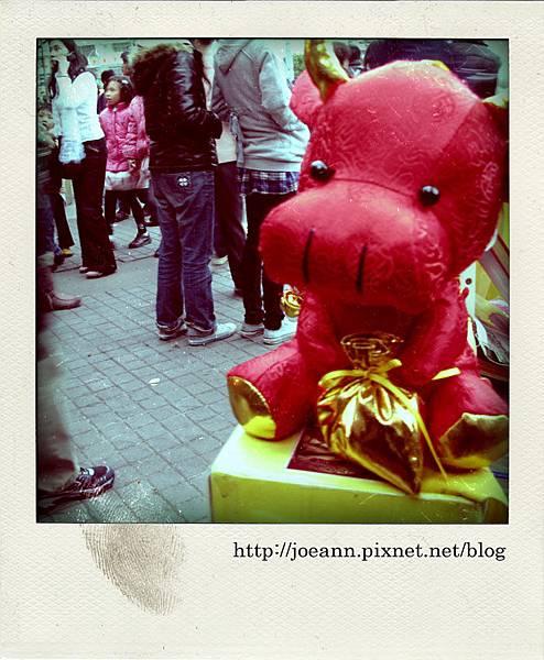 IMG_6435-pola.jpg