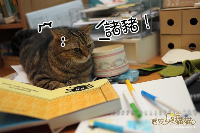 DSC_8871.jpg