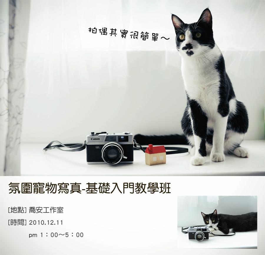 寵物攝影海報.jpg