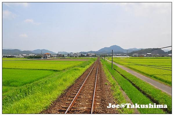 DSC_7327.JPG