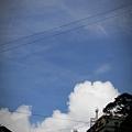 阿里山IMG_1463.JPG