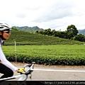 坪林騎單車IMG_2356.JPG