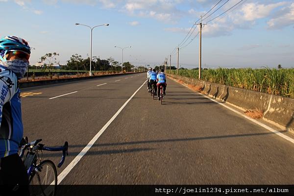 20111203嘉義單車紫線IMG_6343.JPG