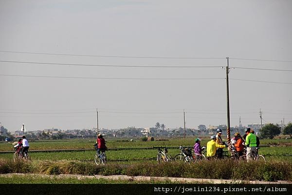 20111203嘉義單車紫線IMG_6425.JPG