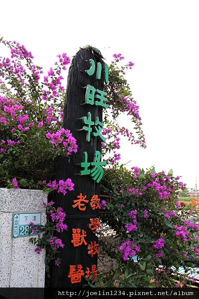 20111203嘉義單車紫線IMG_6487.JPG