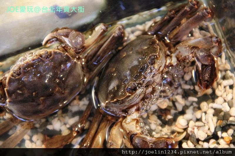 20120108台北年貨大街IMG_8024.JPG