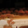 20120211宜蘭蘭陽博物館IMG_8481.JPG