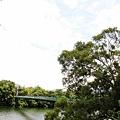 20120603苗栗日新島(明德水庫)IMG_0122