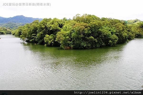 20120603苗栗日新島(明德水庫)IMG_0173