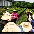 20120627宜蘭有機農村體驗IMG_4093