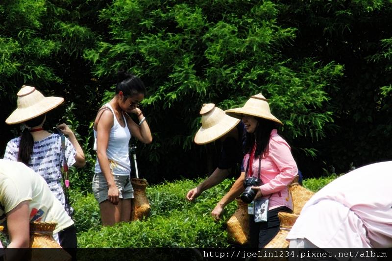 20120627宜蘭有機農村體驗IMG_4101