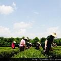 20120627宜蘭有機農村體驗IMG_4112