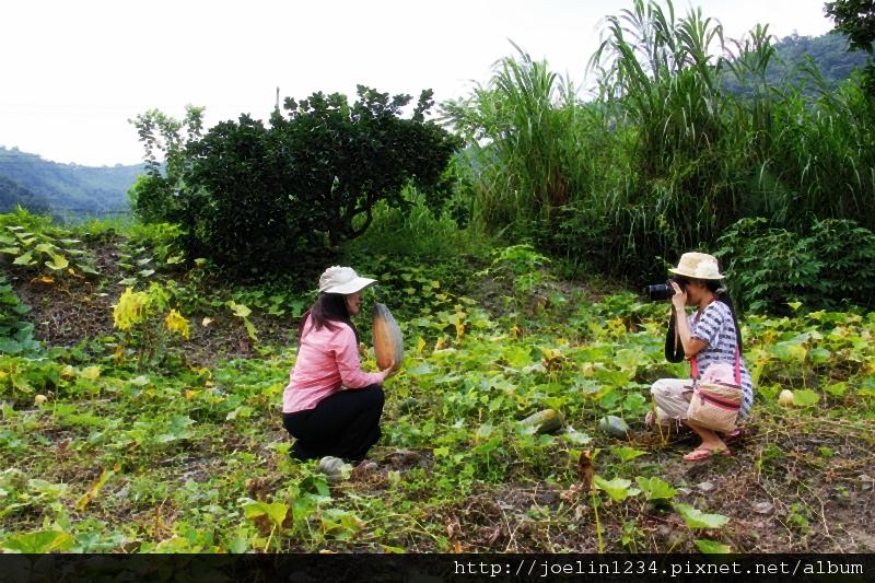 20120627宜蘭有機農村體驗IMG_4318