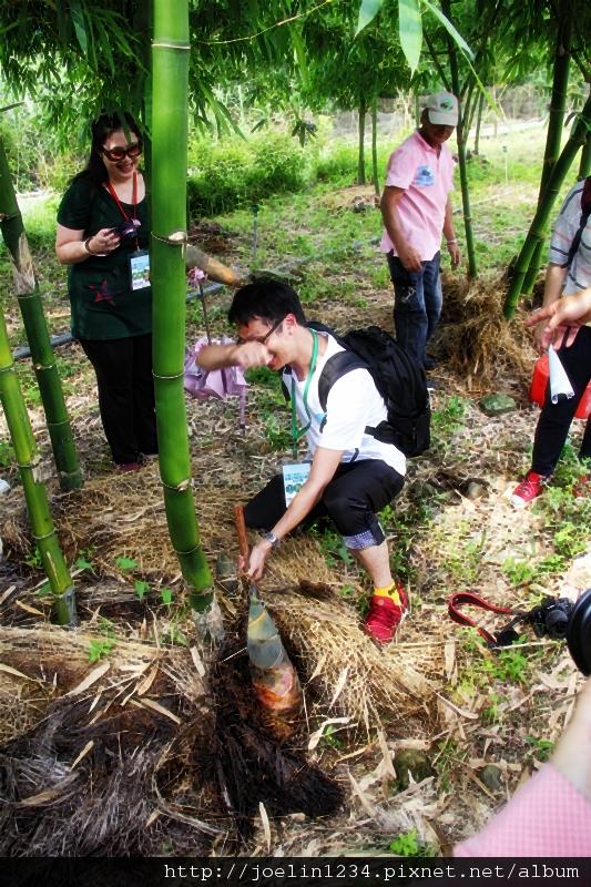 20120627宜蘭有機農村體驗IMG_4322