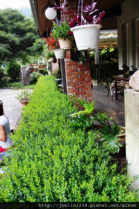 20120627宜蘭有機農村體驗IMG_4372