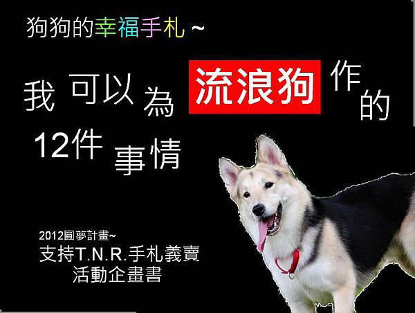 狗狗的幸福手札01