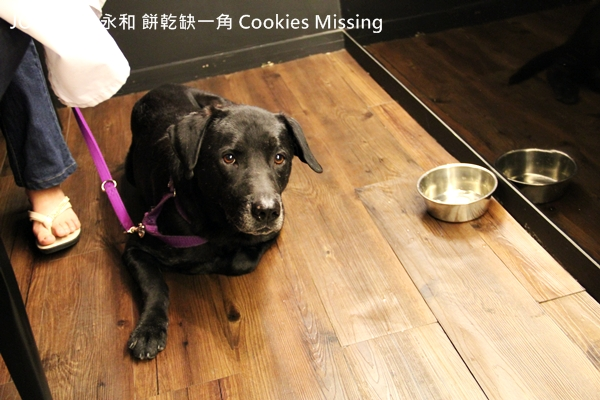 餅乾缺一角Cookies missingIMG_9798