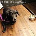餅乾缺一角Cookies missingIMG_9798