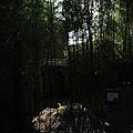 新竹南園TheOneIMG_0547