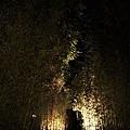 新竹南園TheOneIMG_0756