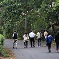 八里柚花IMG_5357
