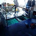 長灘島拖曳傘P4280244