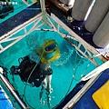 長灘島拖曳傘P4280260