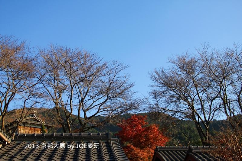 京都大原_IMG_8091.JPG