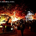 2013京都賞楓_永觀堂夜楓