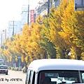 2013京都散策