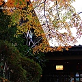 魚山園_IMG_7710.JPG