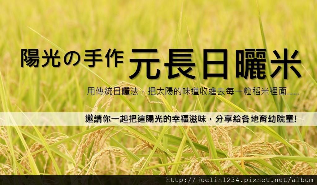 2015元長日曬米認購