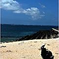 澎湖之旅22.jpg
