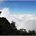 201007台中大雪山11.jpg