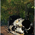 20101129宜蘭羅東林業文化園區53.jpg
