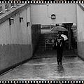 2010香港上水05.jpg