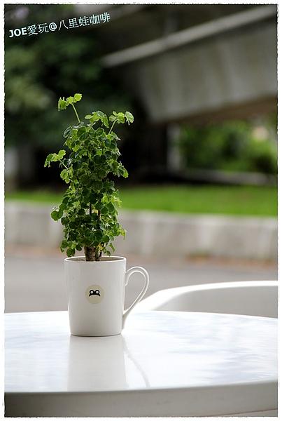 八里蛙咖啡04.jpg