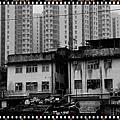 2010香港上水08.jpg