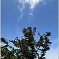 201007台中大雪山10.jpg