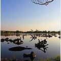 20101129宜蘭羅東林業文化園區20.jpg