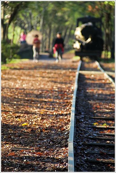 20101129宜蘭羅東林業文化園區24.jpg