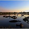 20101129宜蘭羅東林業文化園區21.jpg