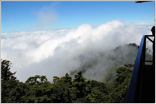 201007台中大雪山09.jpg