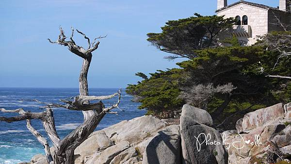 17-Mile Drive, California (2)