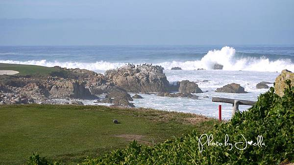 17-Mile Drive, California (13)