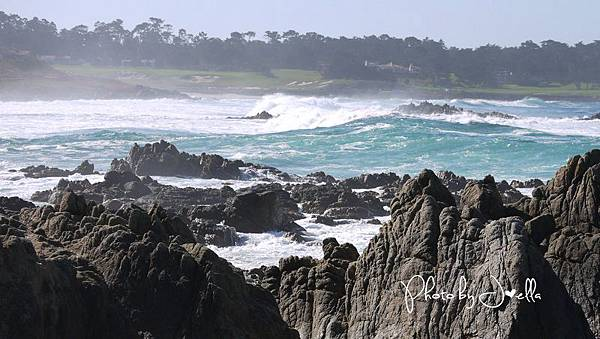 17-Mile Drive, California (26)